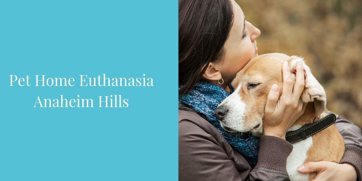 Pet-Home-Euthanasia-Anaheim-Hills