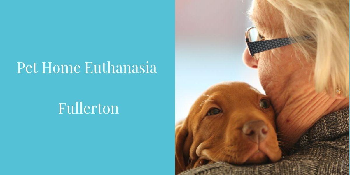Pet_Home_Euthanasia_Fullerton