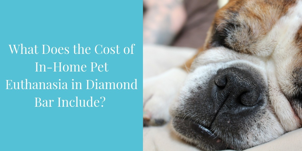 What-Does-the-Cost-of-In-Home-Pet-Euthanasia-in-Diamond-Bar-Include_